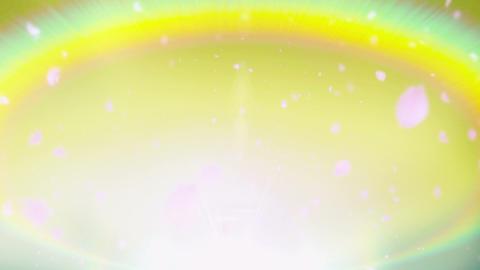 Cheery Blossom Rainbow 01D Stock Video Footage
