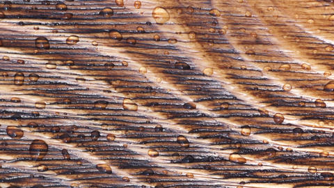 Water drops on wood surface Stock Video Footage