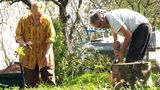 Senior Couple Doing Gardening In Their Backyard stock footage