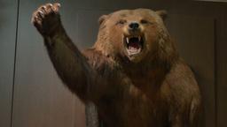 Scary Stuffed Bear Footage