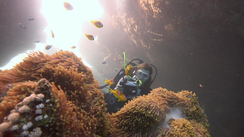 Underwater videographer filming in one of the crevices of the reef St. Johns Footage