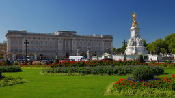 Static shot of Buckingham Palace in London with gardens and flower beds in front Footage
