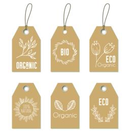 Eco organic tags. Vector set of floral craft labels Vector