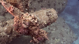 Screw close up ship Salem Express wreck on seabed underwater in Egypt Footage