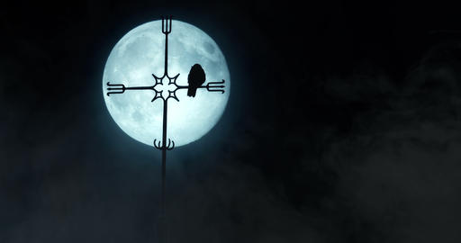 Raven resting on a church spire silhouetted by the moon Footage