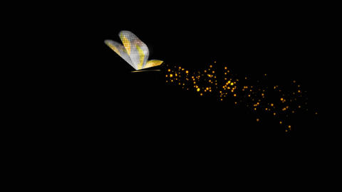 Fancy-Gold Butterfly Flying Around