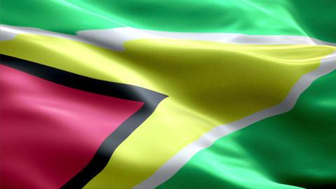 Flag Guyana Animation