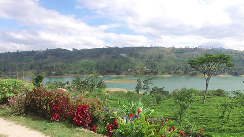 View To Lake Or River From Land Hills stock footage