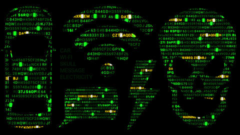 Icons of Internet Code. Digital Jolly Roger. Wifi. Car. Electronic message. The GIF