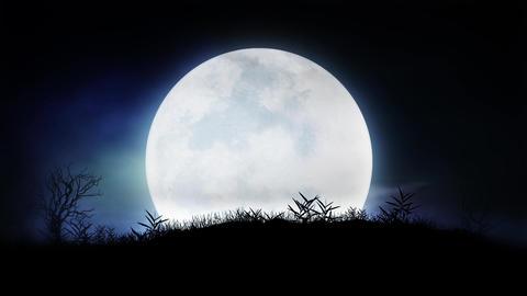 Midnight Moon Shine Animation