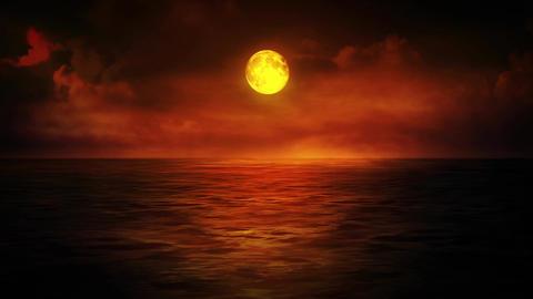 Moonlit Dusk Animation