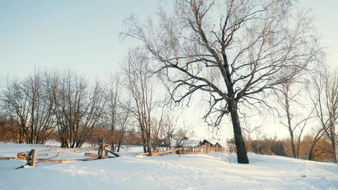 winter country landscape Footage
