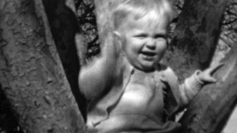 1961: Baby climbs tree gets stuck waves cutely to crowd Footage