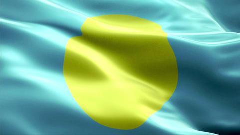 Flag Palau Animation