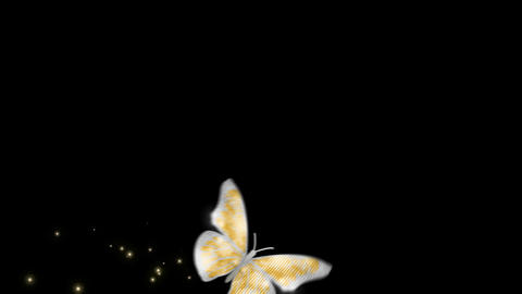 Butterfly gold wing V2 blur Animation