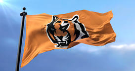 Cincinnati Bengals flag, american football team, waving - loop Animation