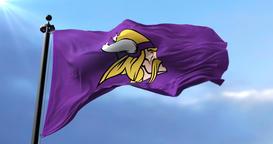 Minnesota Vikings flag, american football team, waving - loop Animation