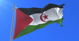 Flag of Western Sahara waving at wind in slow with blue sky, loop Animation