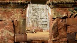 Komodo dragon or Komodo monitor in a oriental old temple- Varanus komodoensis Footage