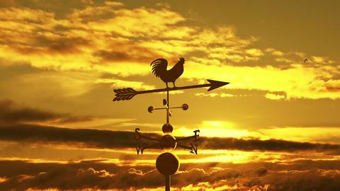 Weathervane cockerel sunset Animation
