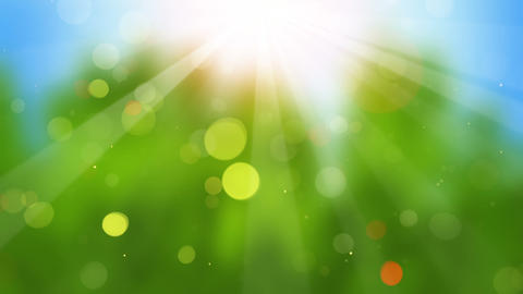 sunbeams on blurry background seamless loop Animation