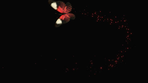 Butterfly Red V2 blur Animation