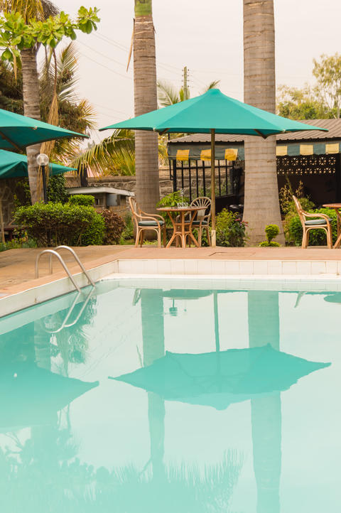 Shade of an umbrella and a palm tree in a pool of a hotel Photo