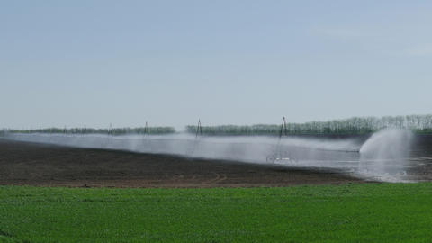 Irrigation Of The Field Footage