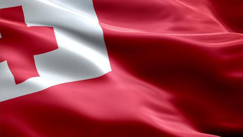 Flag Tonga Animation