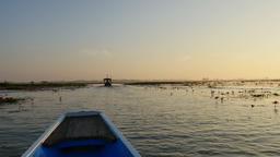 Sunrise in Morning on boat trip at pink lotus lake, Thailand Footage