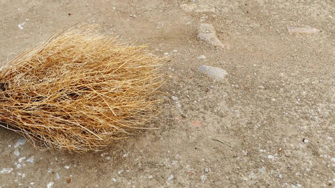 grass broom, handmade broom, classical village broom Live Action