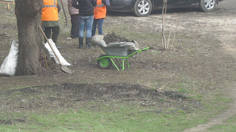 Workers are standing next to the wheelbarrow Footage