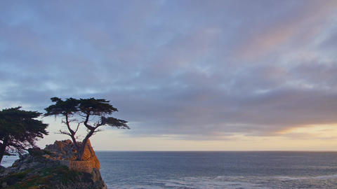 Standalone Tree, 17 Mile Drive Footage