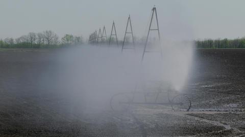 Irrigation Of The Field, medium close up Footage