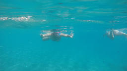 Woman approaching swimming and snorkeling on a beach with turquoise waters, slow GIF
