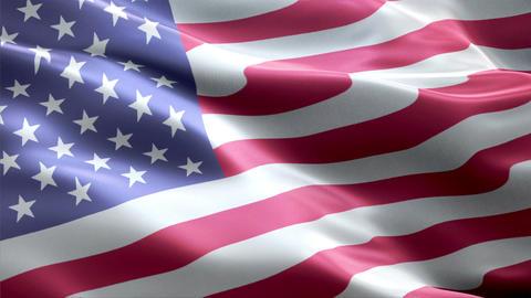 Flag United-States Animation