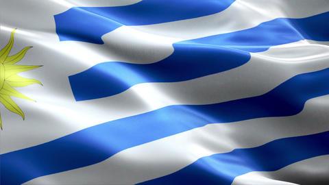 Flag Uruguay Animation