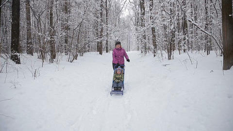 young funny family is sledging in winter-landscape Footage