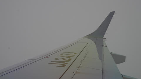 The view from the airplane Live Action