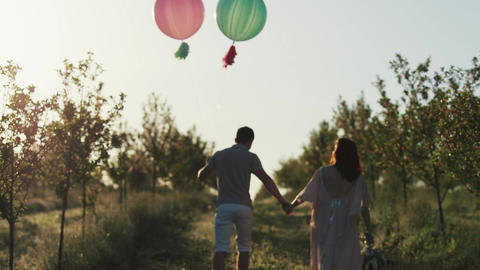 Couple walking in a apple garden and holding hands at sunrise GIF