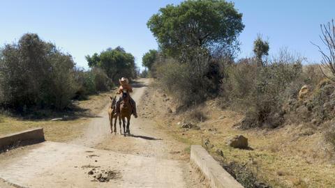 ERONGARICUARO, MEXICO - NOVEMBER 1, 2016 - Young Mexican cowboy leading a horse Footage