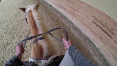 learning horse riding course, rider point of view, gopro Footage