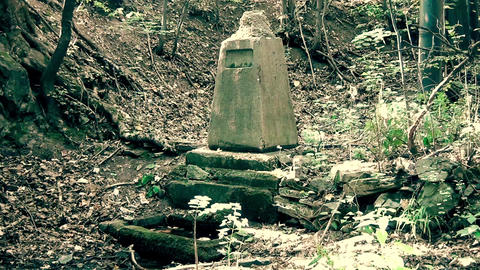 Old Memorial Stone deep in a forest Footage