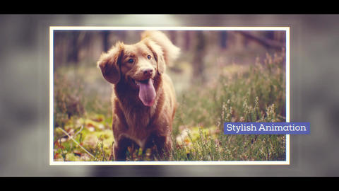 Happy Slideshow After Effects Template