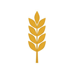 Barley icon in flat design Vector