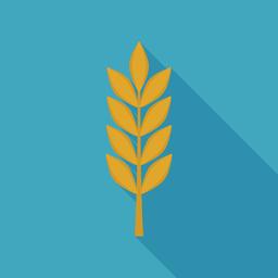 Barley icon in flat long shadow design ベクター