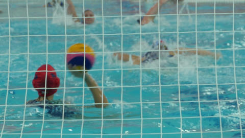 Water polo women view from behind the gate Footage