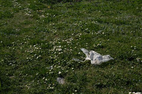 Trash on flower field フォト