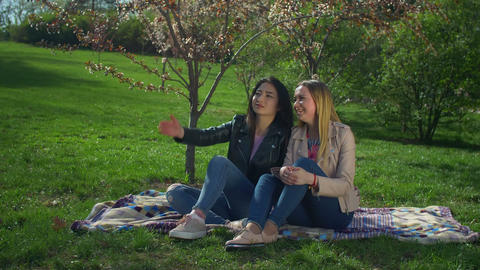 Two adorable diverse girls resting in blooming park Footage