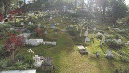 Catholic cemetery in the Philippines Footage